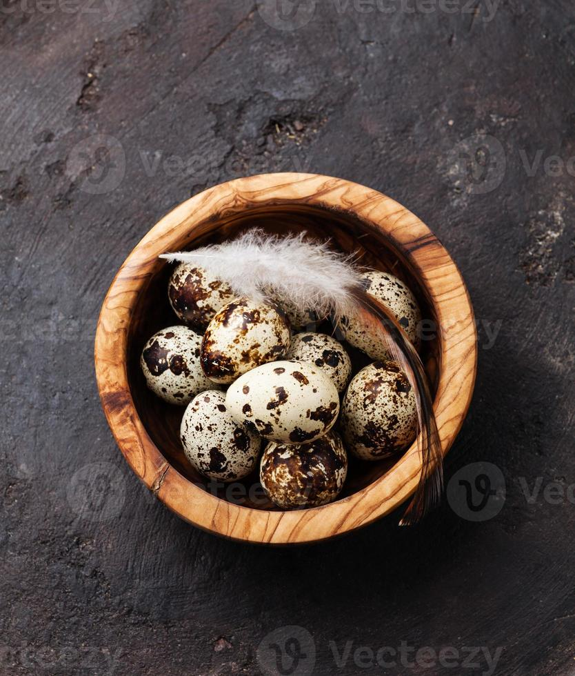 fresh quail eggs photo