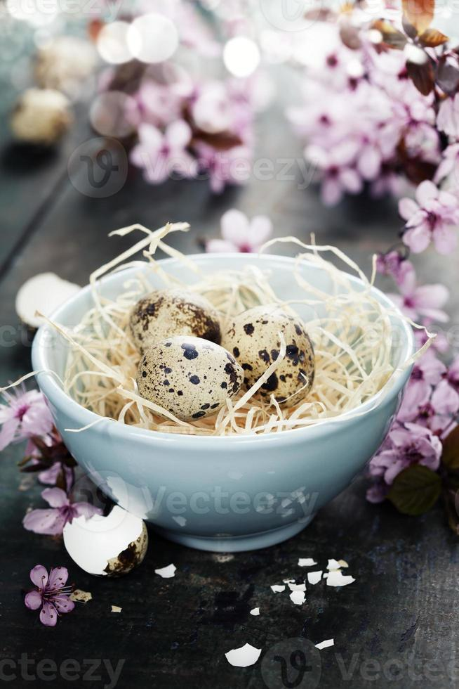 Quail easter eggs in a bowl photo