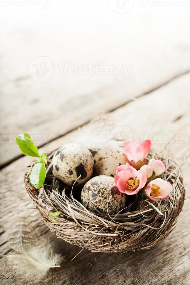 Pascua de Resurrección foto
