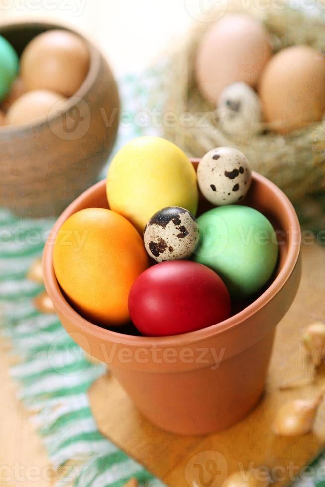 eggs for the Easter photo