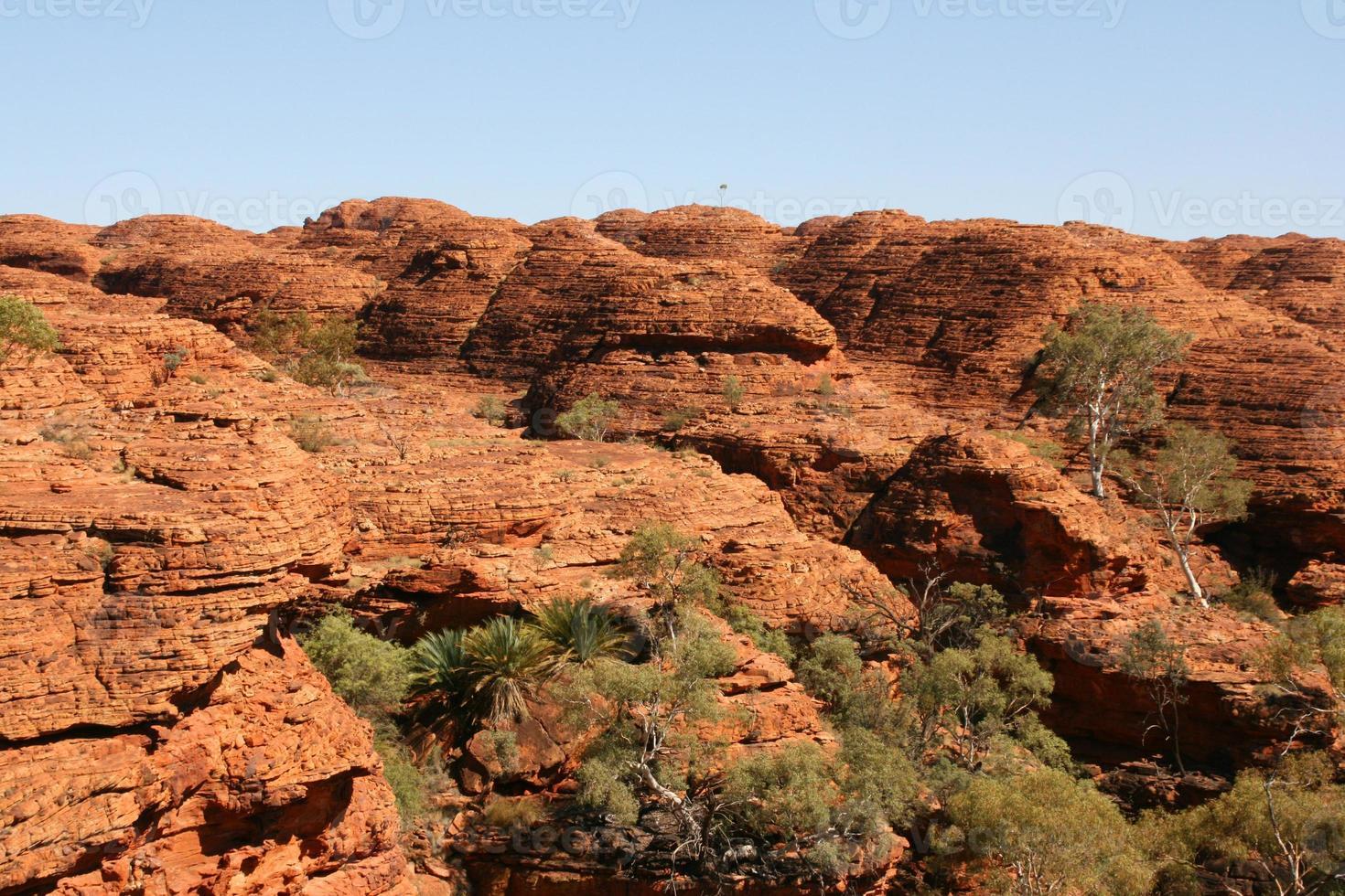 Kings canyon national park, Australia photo