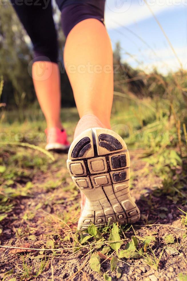 Walking or running shoes in forest, adventure and exercising photo