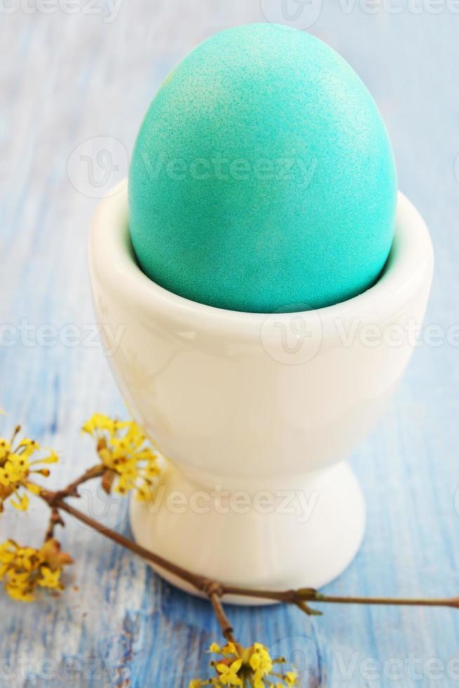 Turquoise egg photo