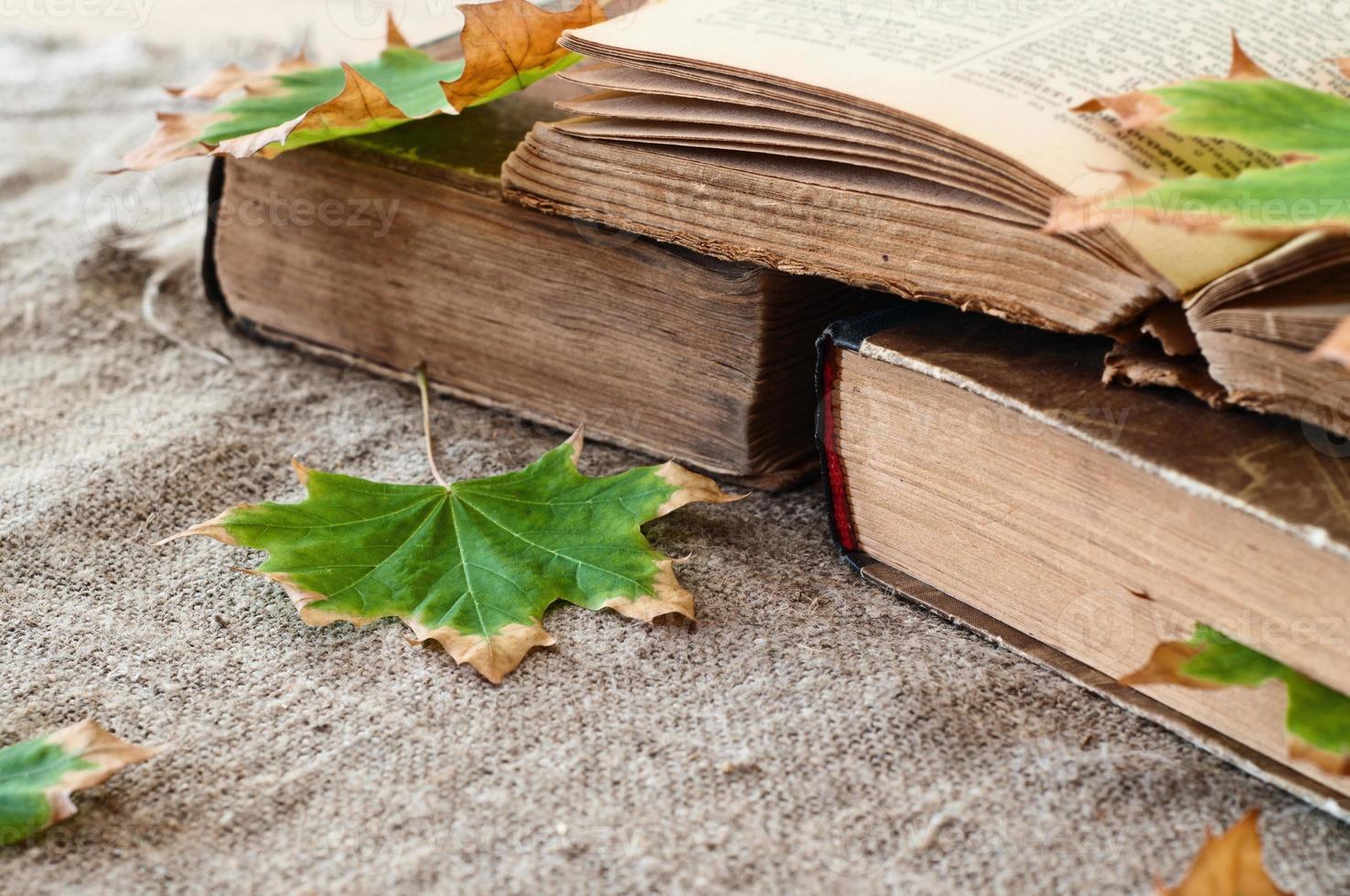 libro vintage con hojas de arce otoñal foto