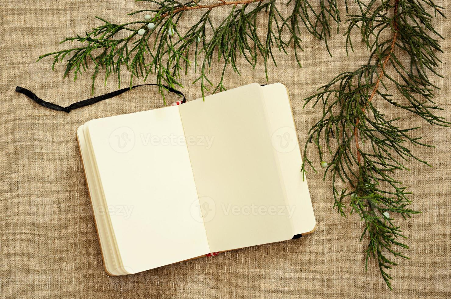 Notebook and juniper branches photo