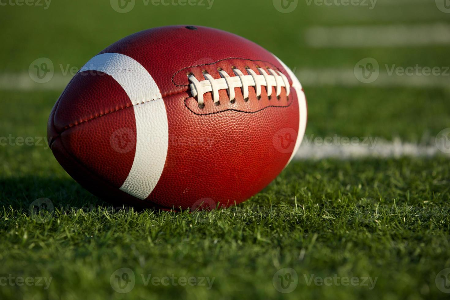 Football on the Field Close Up photo