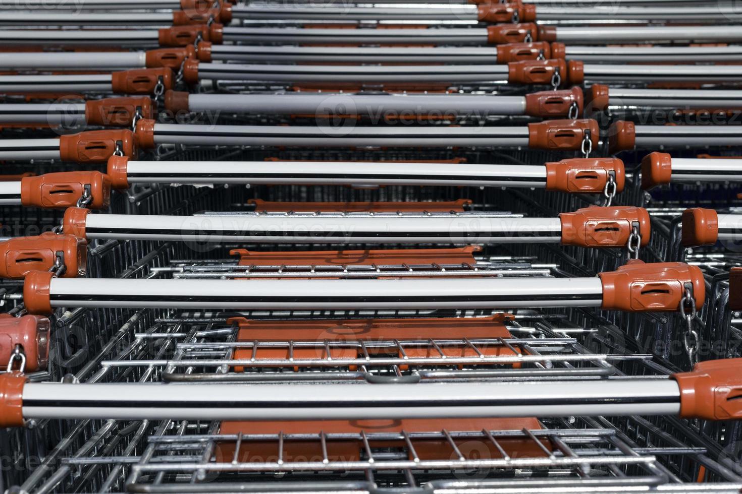 Shopping carts photo