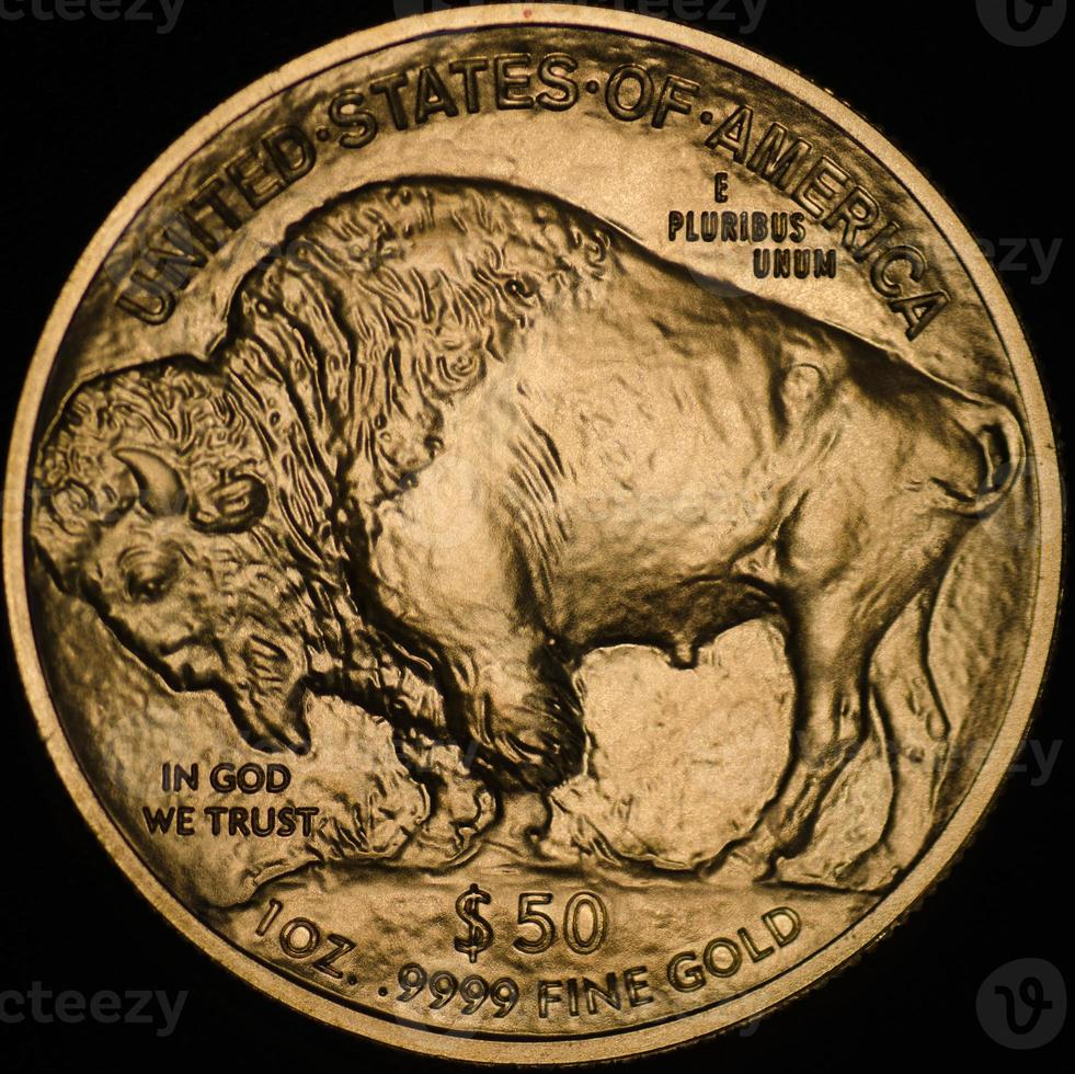 United States Buffalo Gold Coin (Reverse) photo