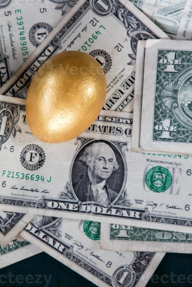 Single gold nest egg on US dollars photo