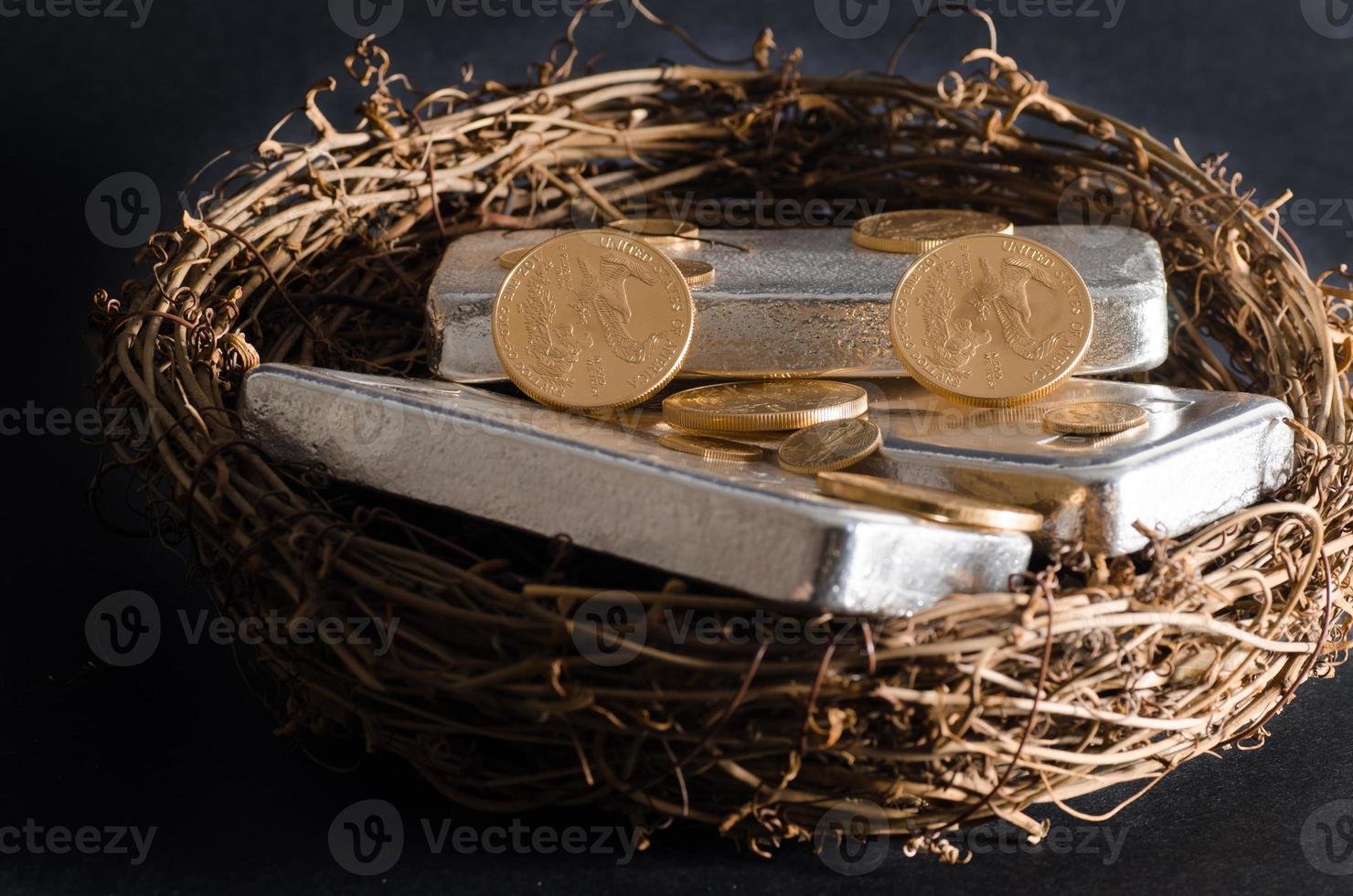Gold Coins & Silver Bar Nest Egg photo