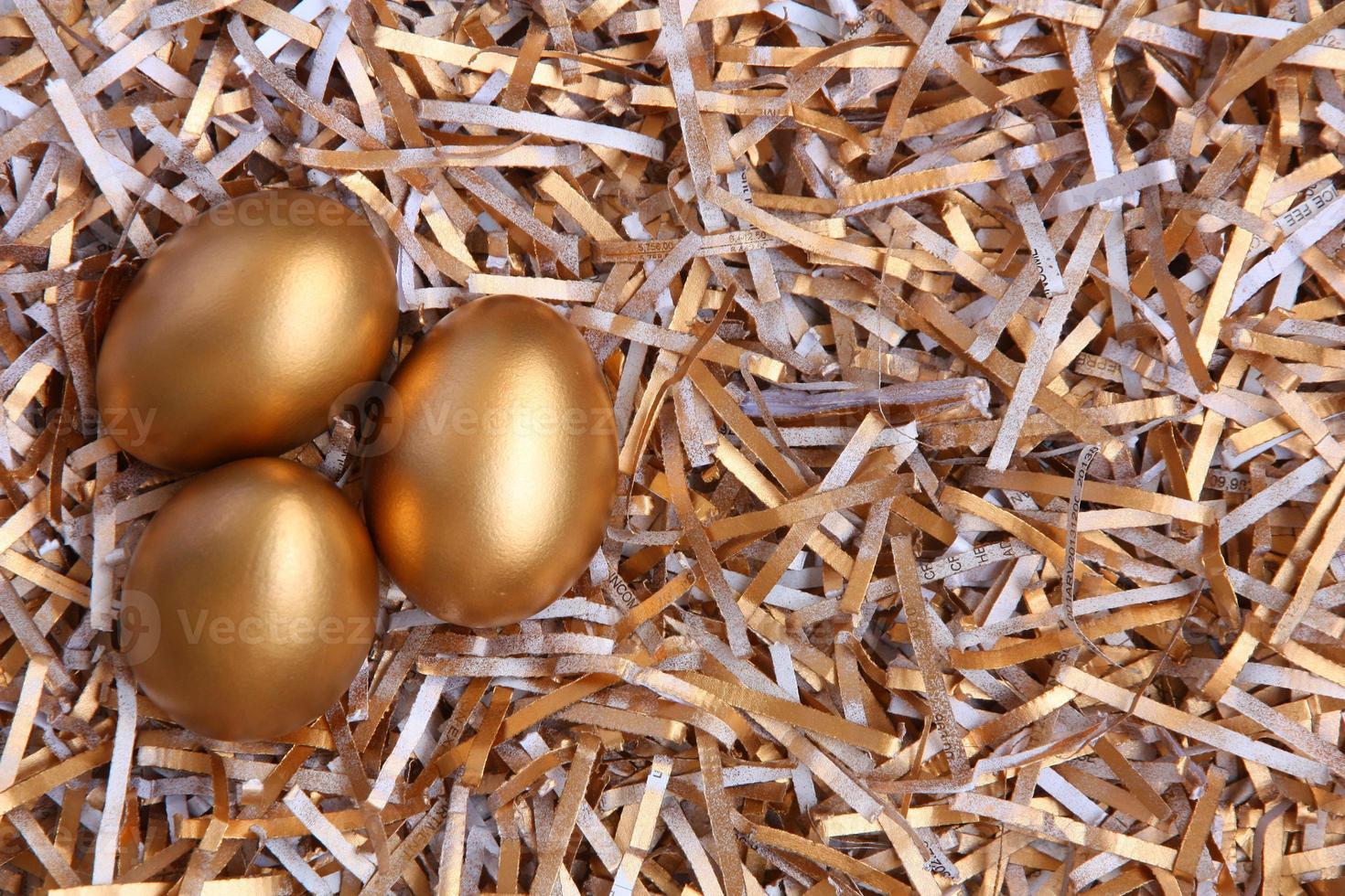 Golden eggs photo