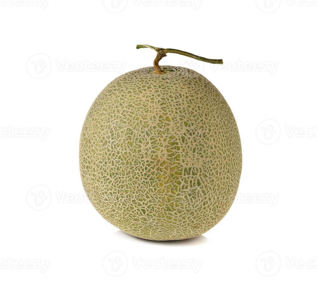 whole ripe melon with stem on white background photo