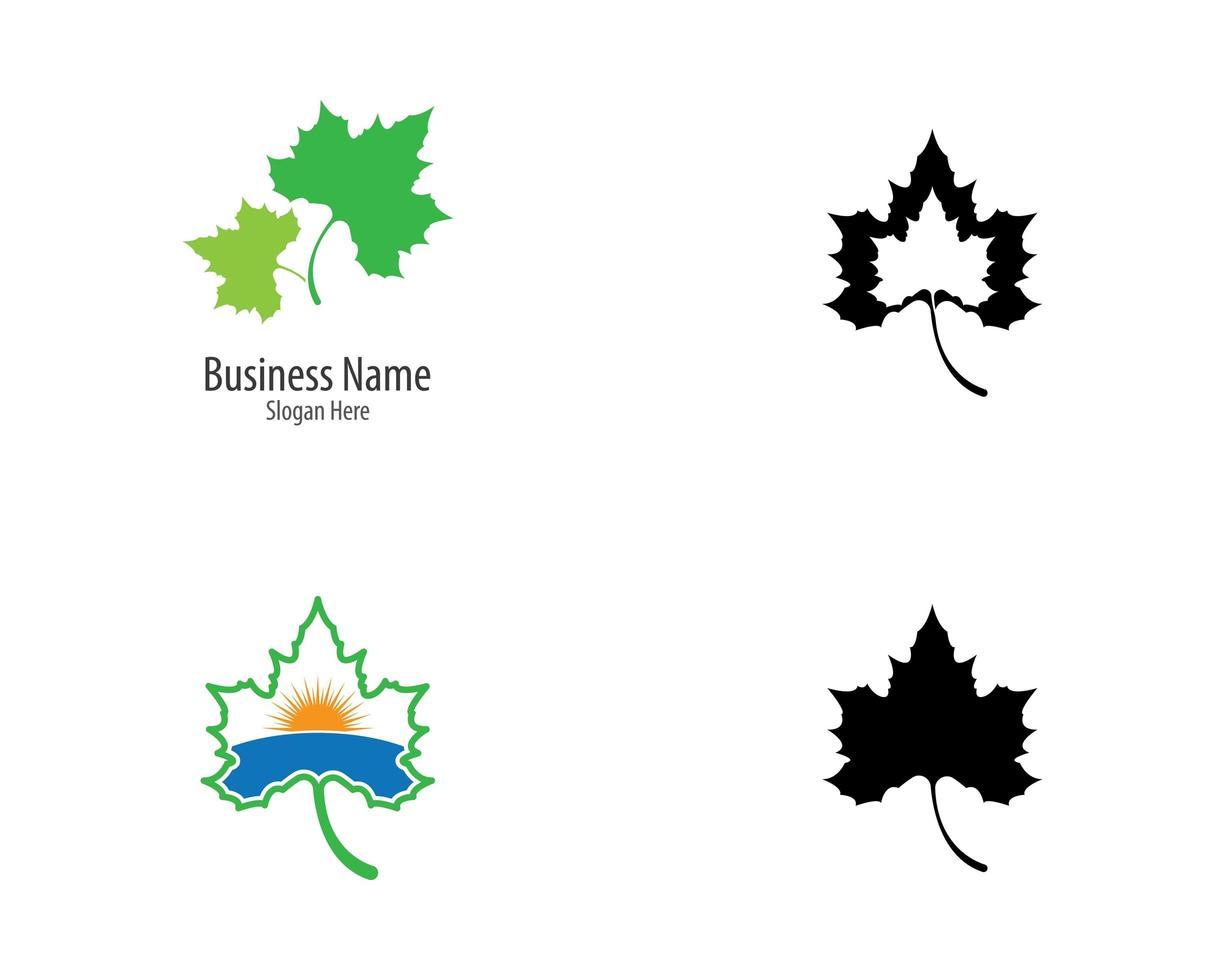 Maple leaf logo set vector