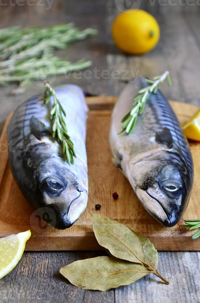 Raw mackerel. photo