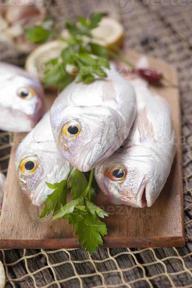 Pile of fresh fish photo