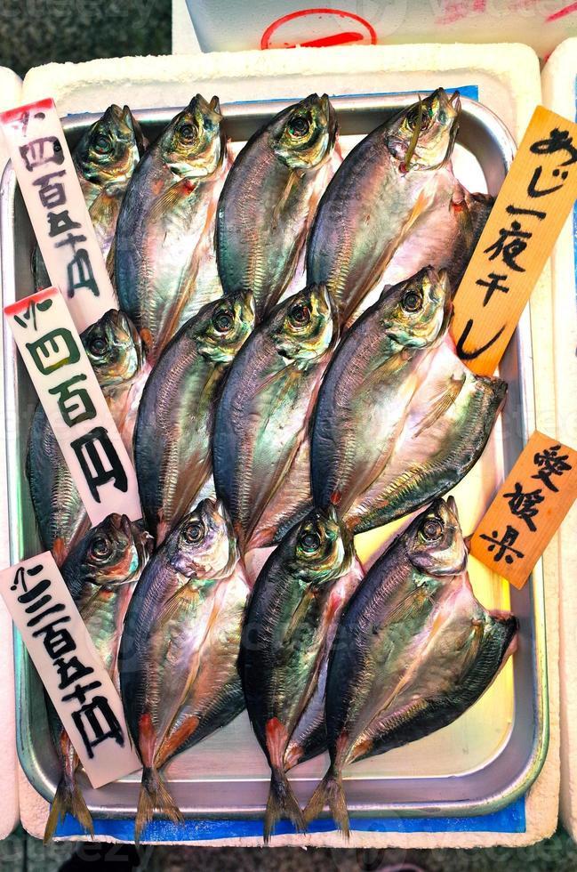 Fish Displayed at a Japanese market photo