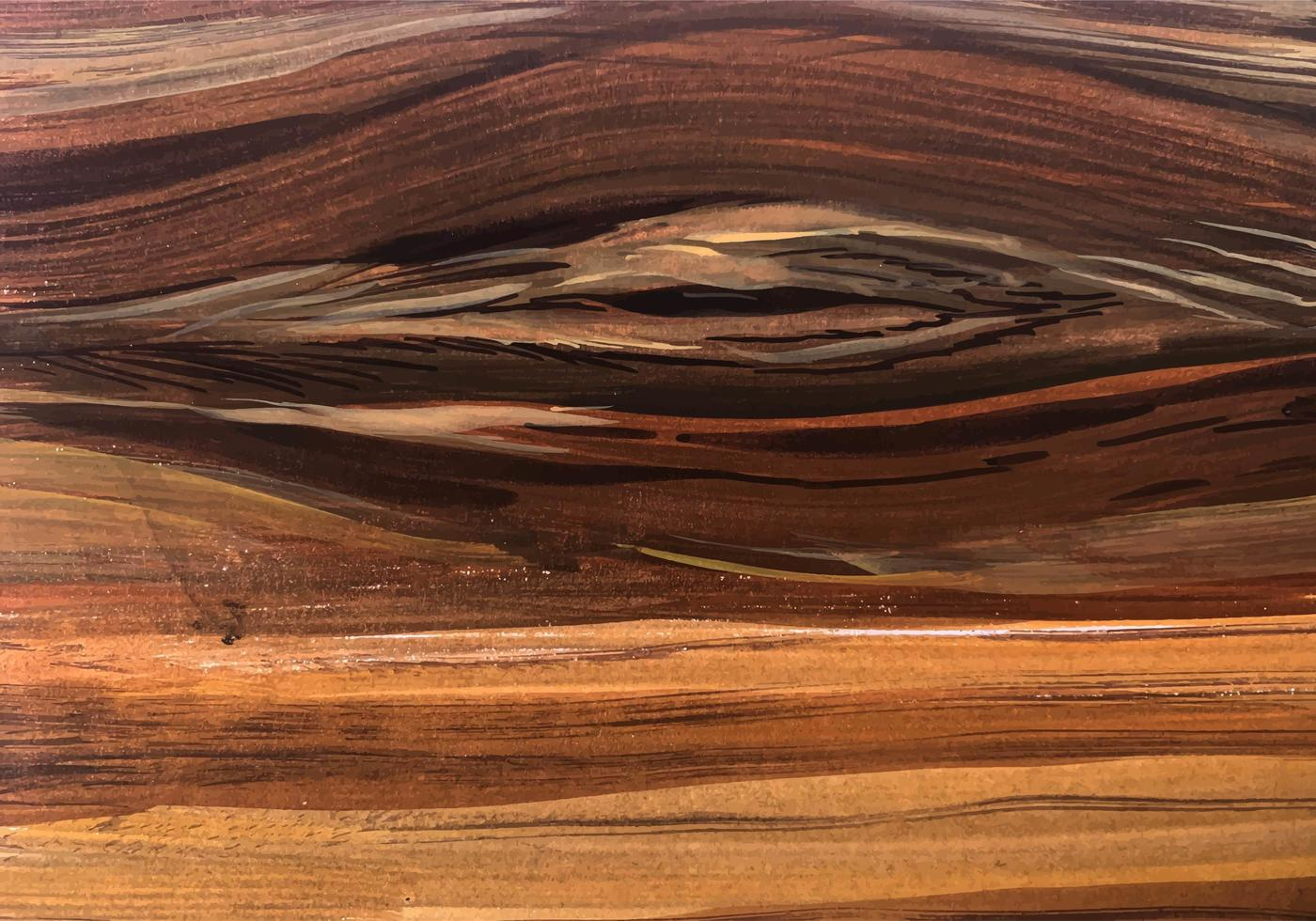 Abstract Cedar Knot Swirl Wood Texture vector