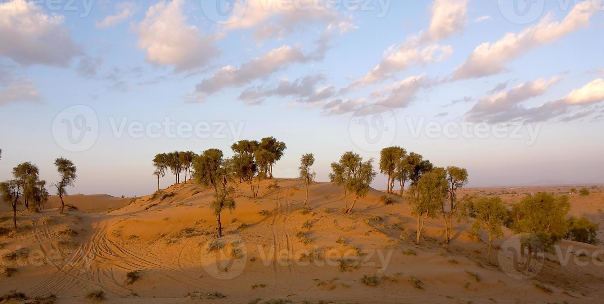 escena del desierto foto