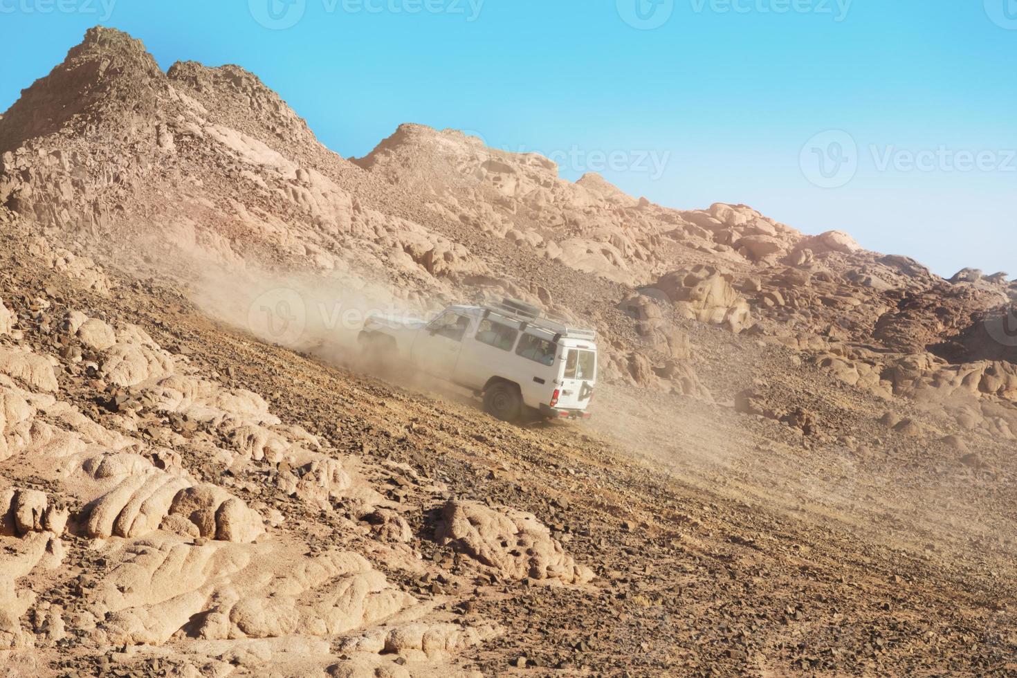 Safari dans un désert photo