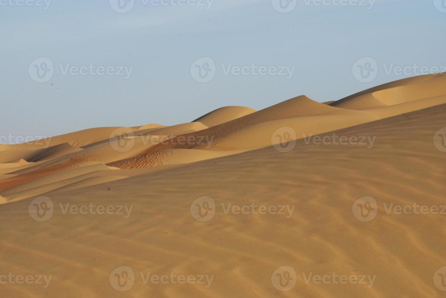 desierto de abu dhabi foto