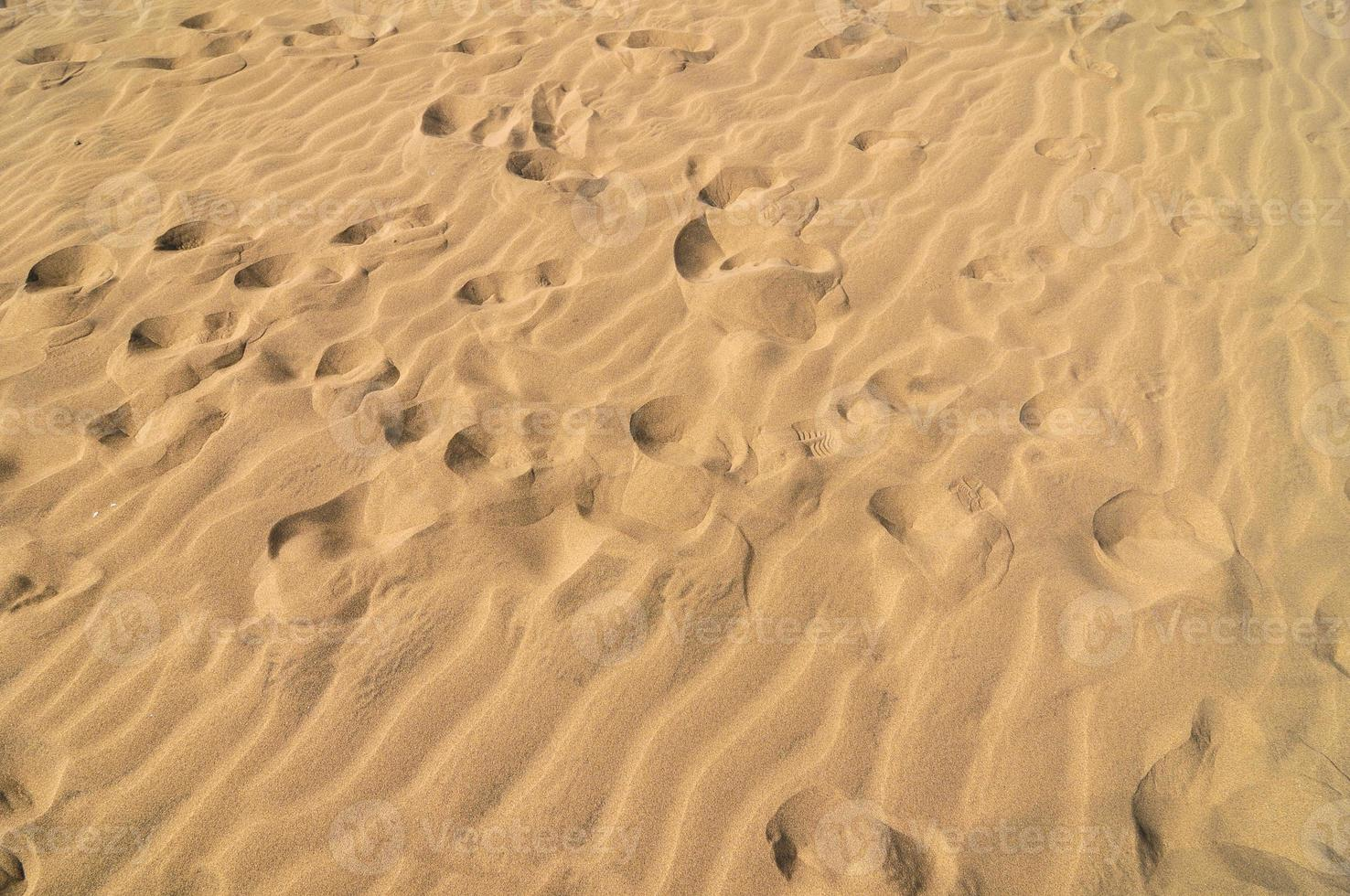 desierto de dunas de arena foto