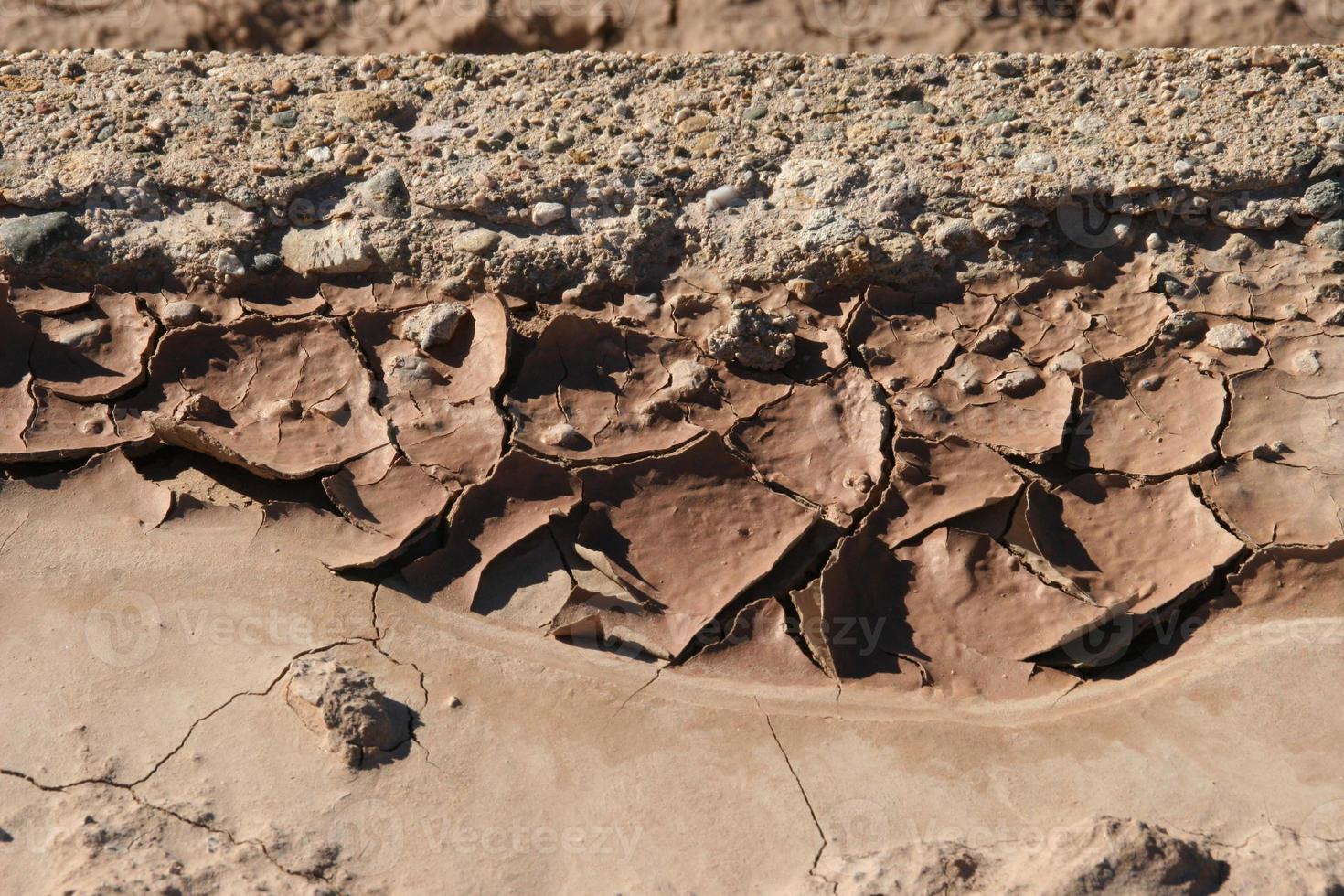 Desert Mud photo