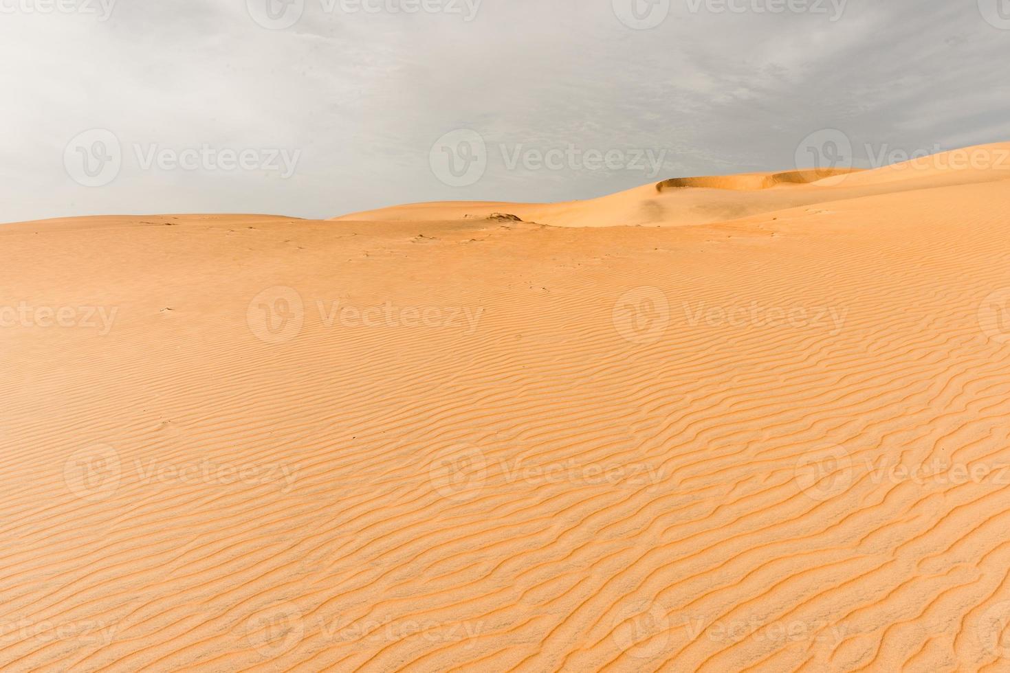 el desierto del Sahara foto