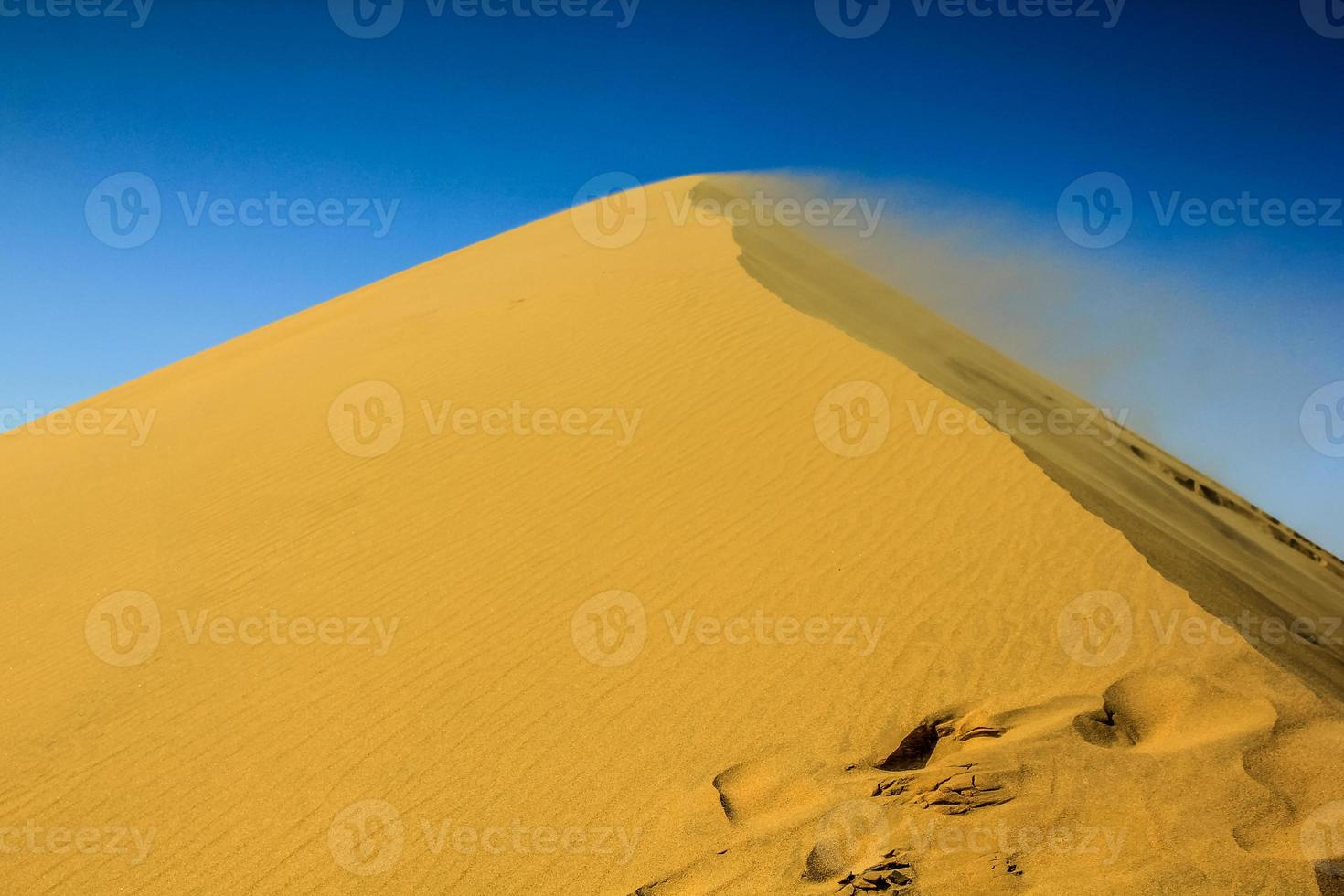 desierto de namib foto
