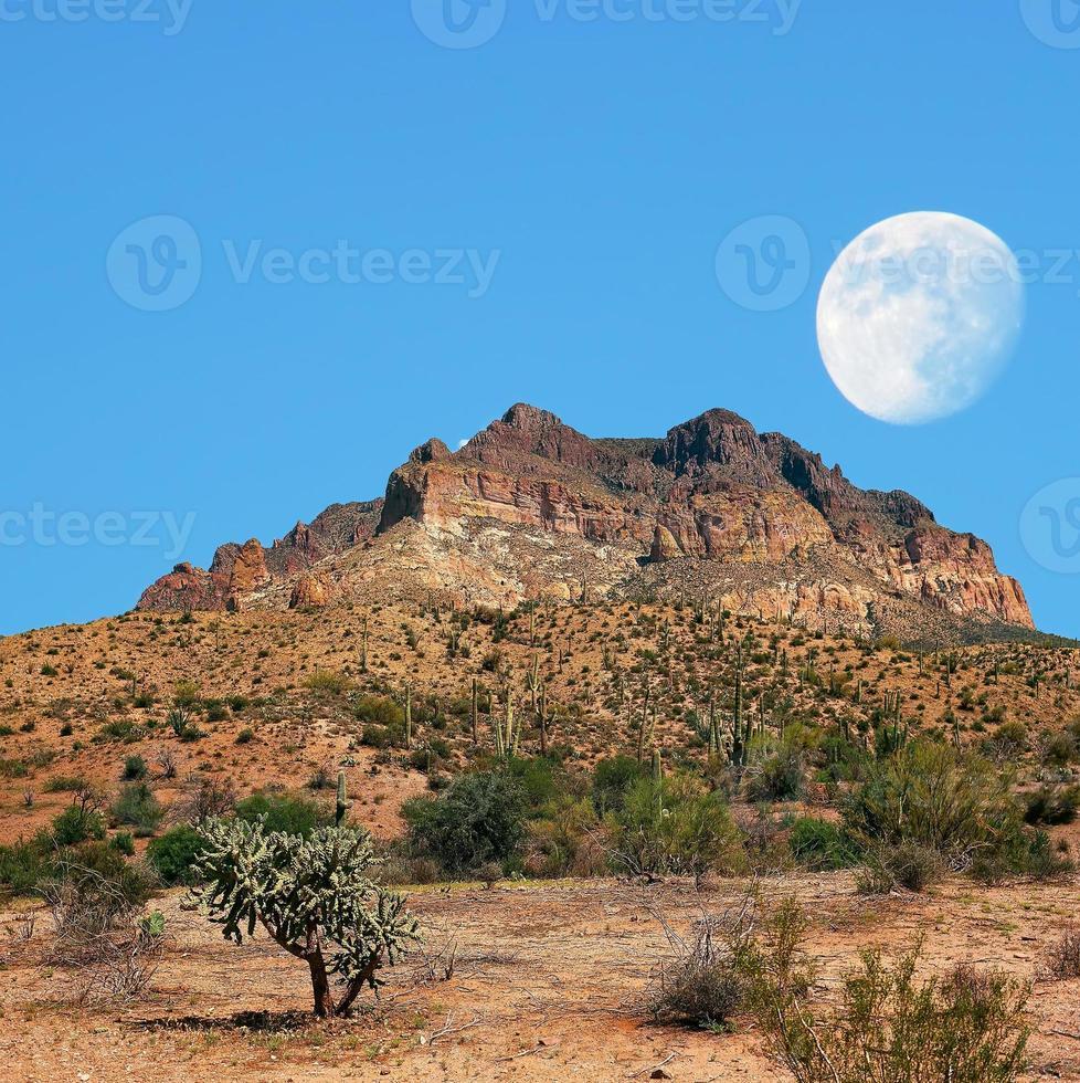 woestijn maan foto