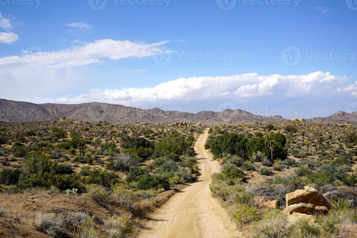camino arenoso en el desierto foto
