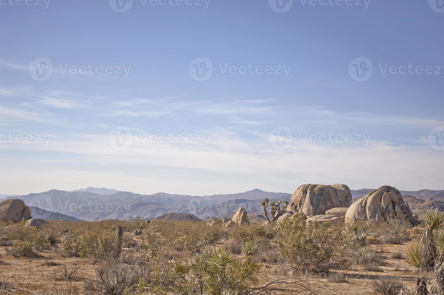 paisagem do deserto de mojave foto