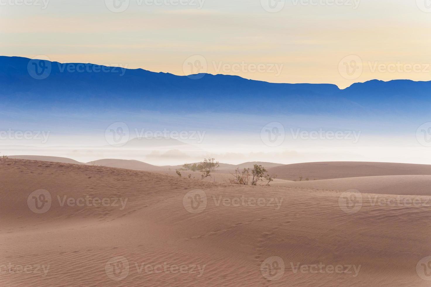 dunas de arena del desierto foto