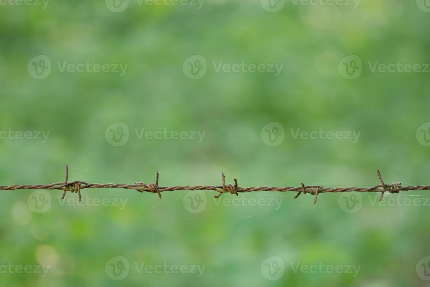 alambre de púas oxidado foto