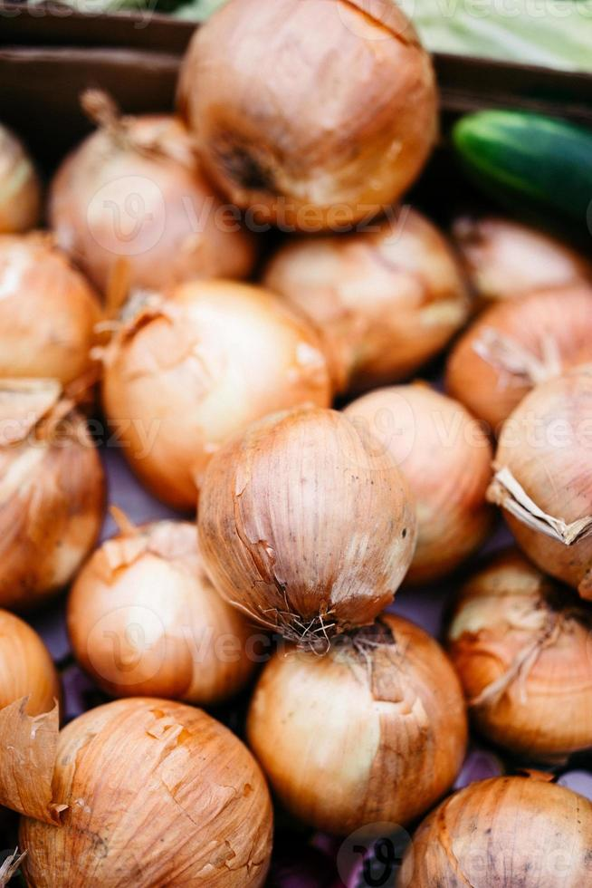 Onions at the market photo