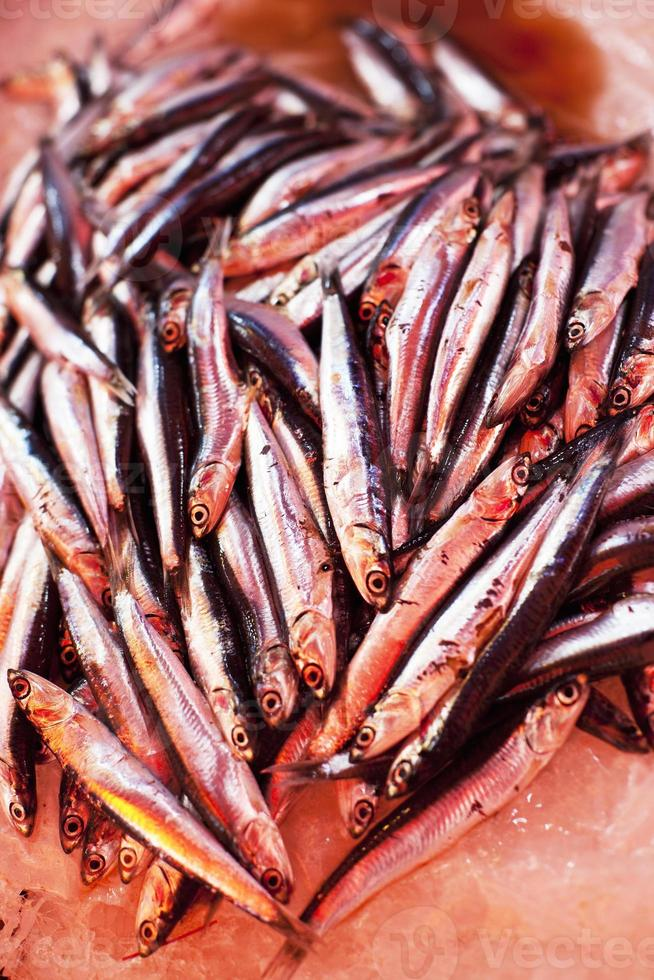 Las sardinas frescas en el mercado local de Sicilia Sicilia Italia foto