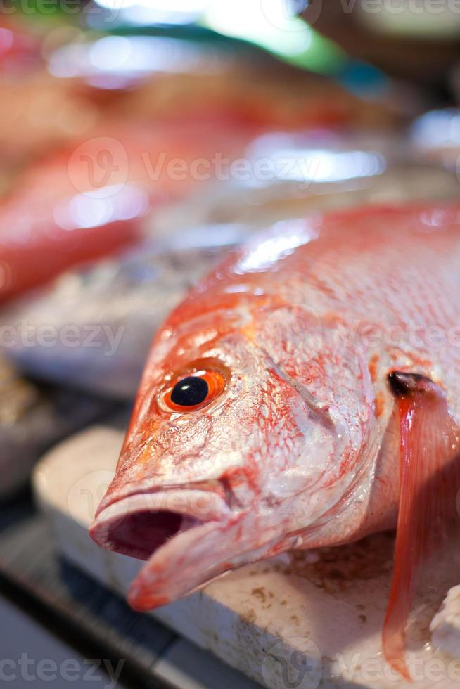 Lapu-lapu, red snapper and tuna, seafood on market photo