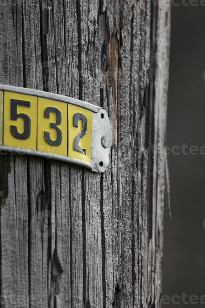 telephone pole tag photo