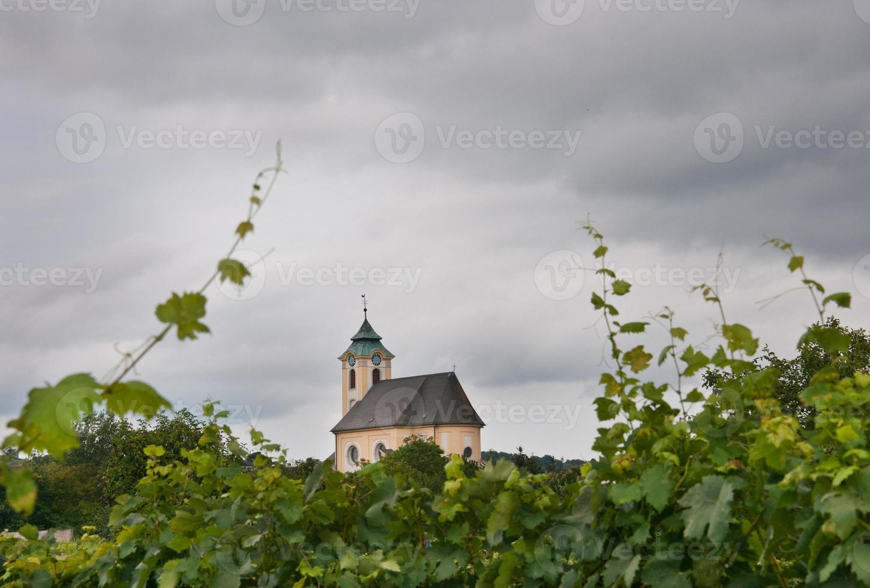 little church between vineyards photo