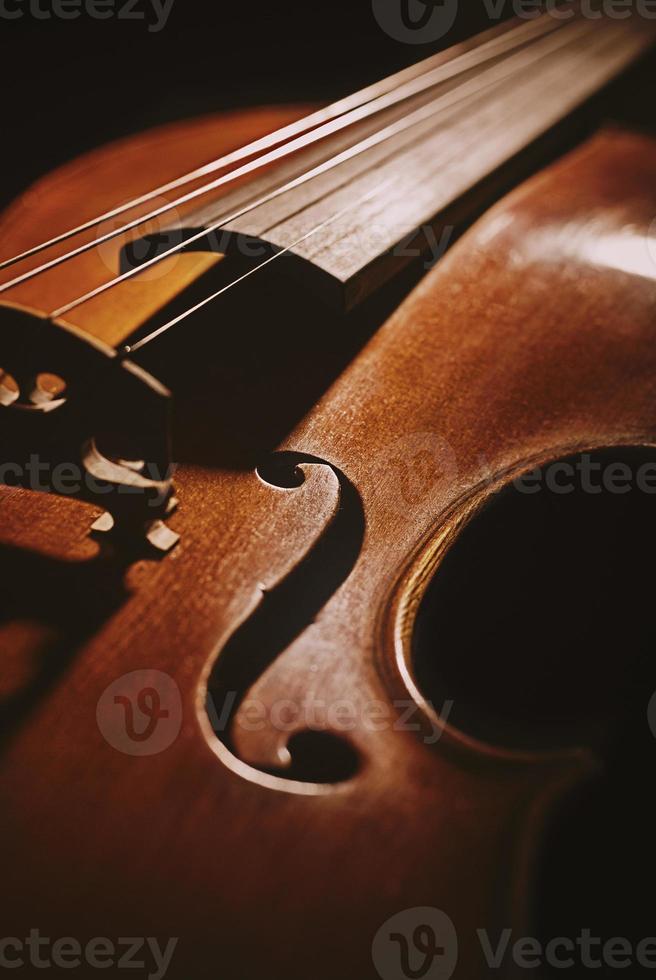 violín viejo foto