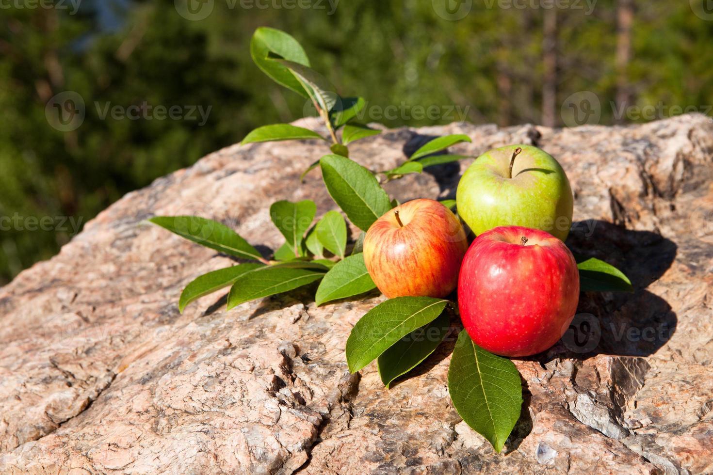 Fresh apples on big stone photo