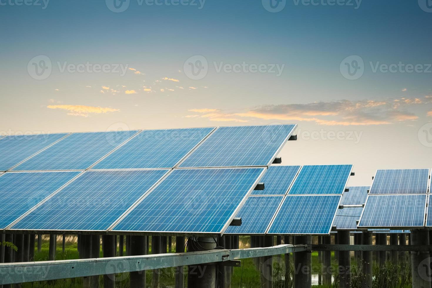 solar farm at dusk photo