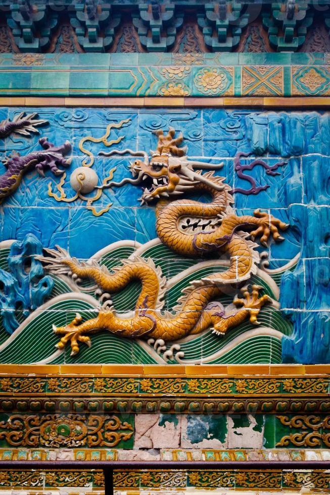 pared de dragon foto
