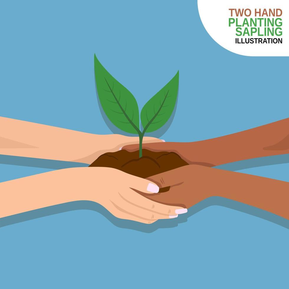 dos manos sosteniendo el arbolito de siembra vector