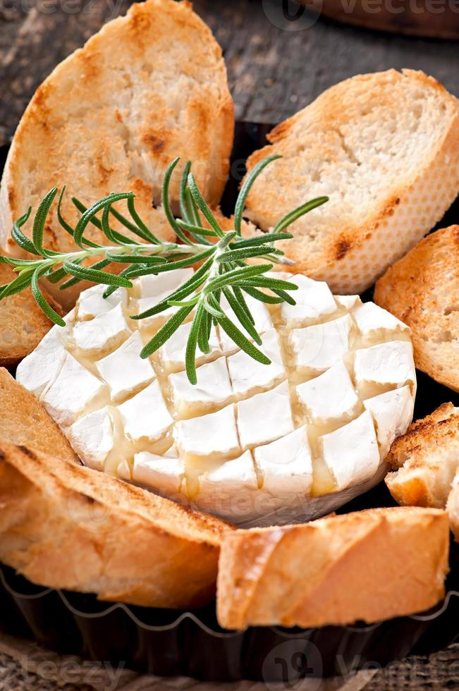 Baked Camembert cheese with rosemary photo