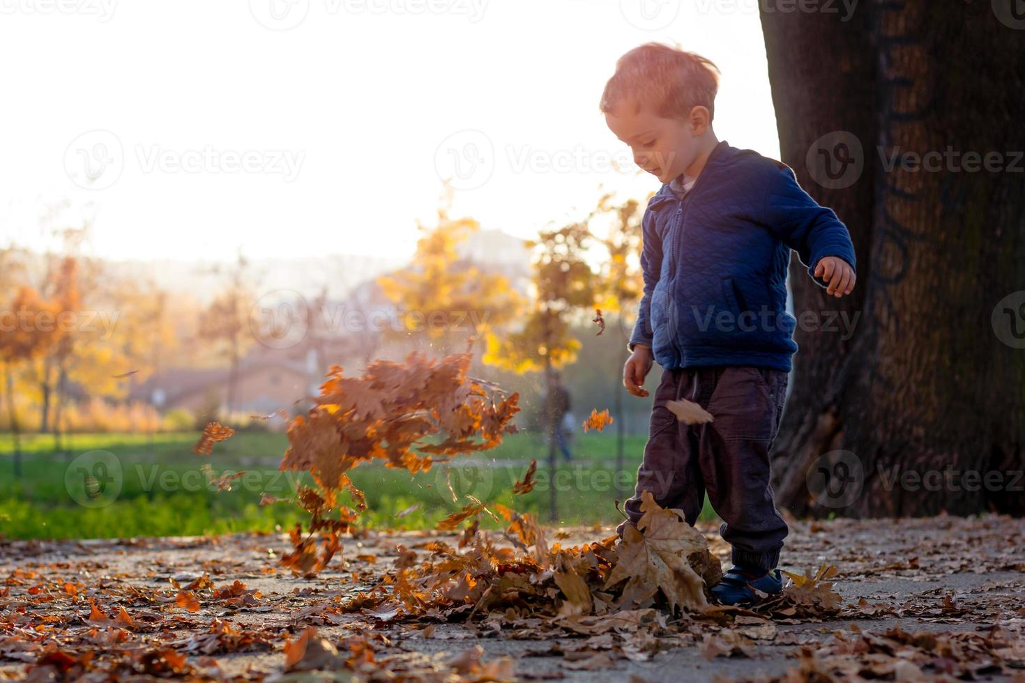 two year old boy in a park kick leafs-playing photo