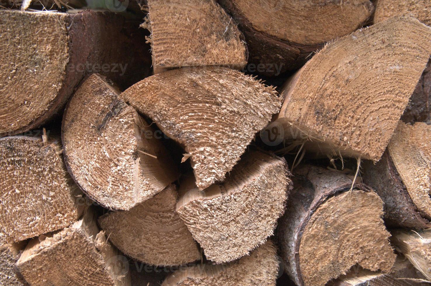 montones de troncos foto
