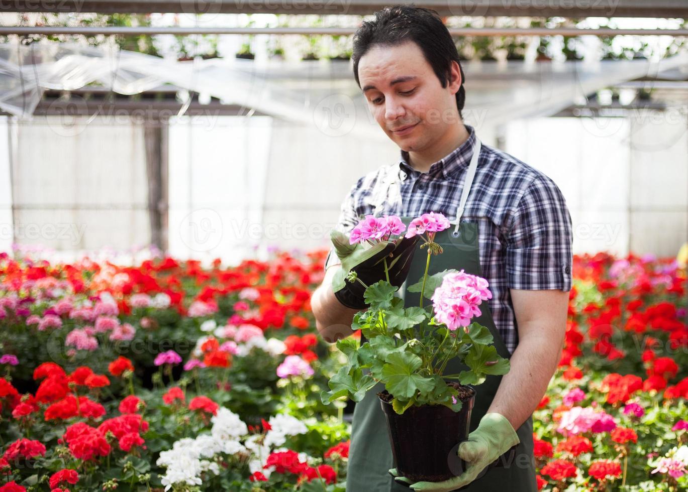 hombre en el trabajo en un invernadero foto