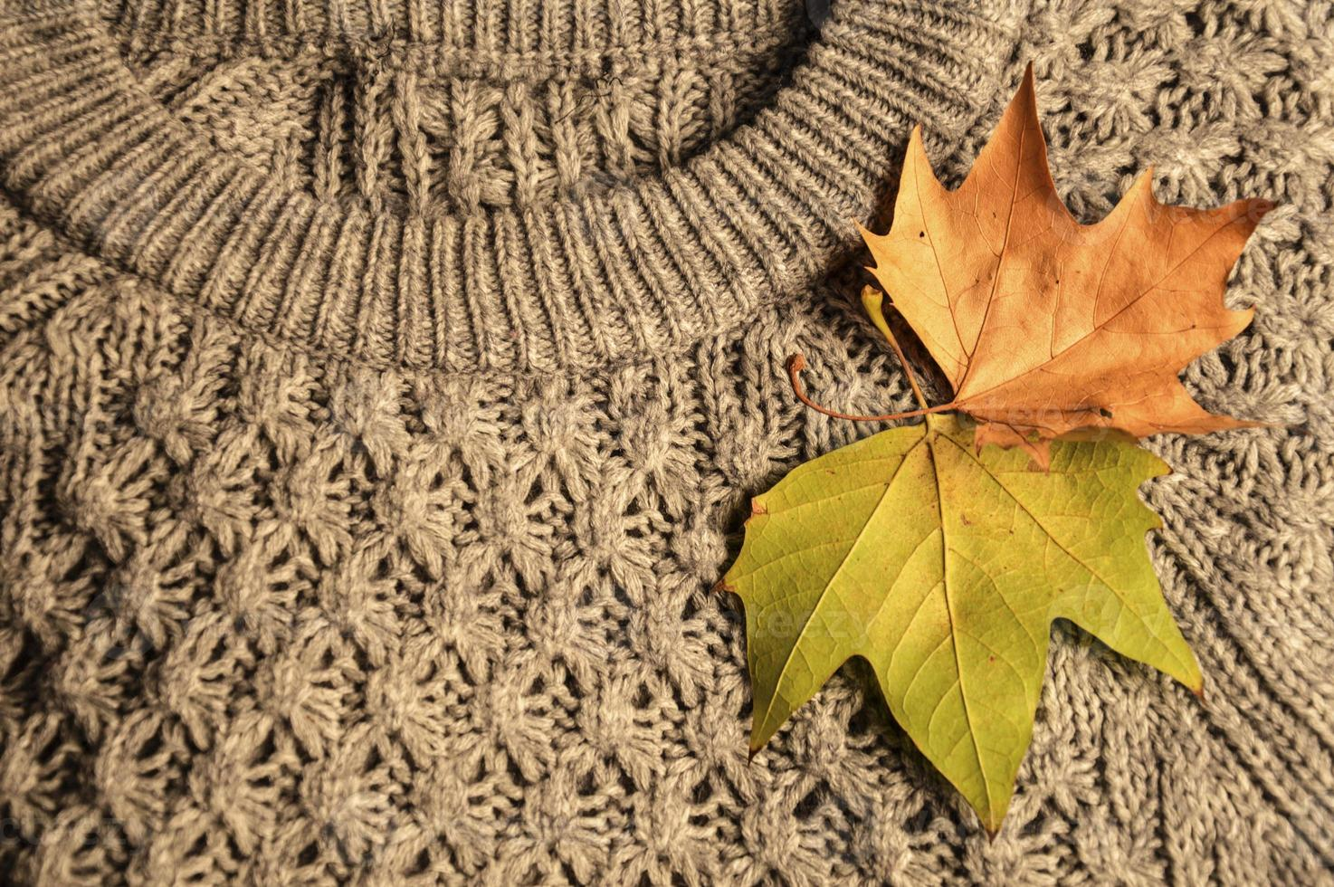 Woolen sweater photo