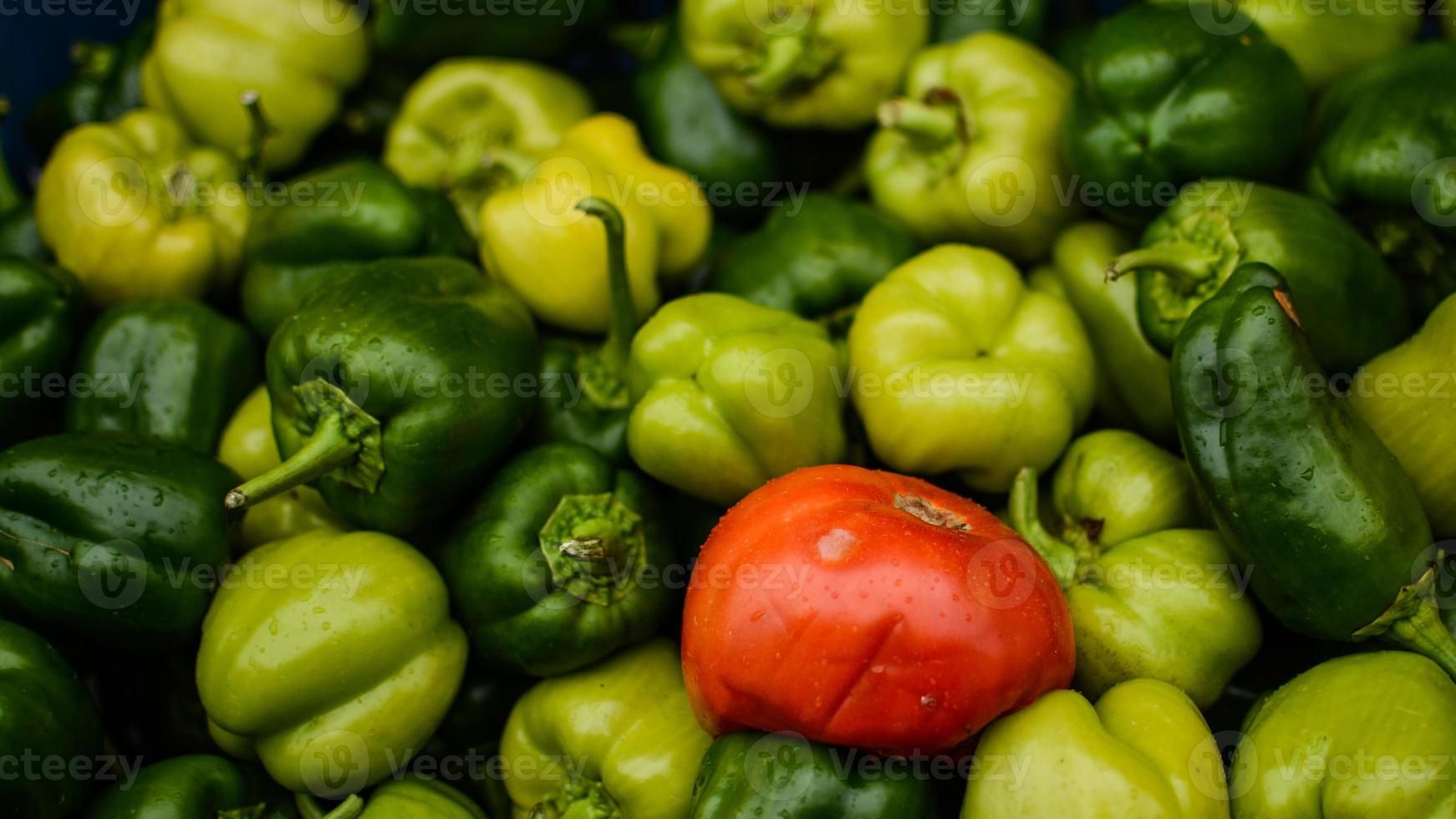 red tomato and green peppers photo