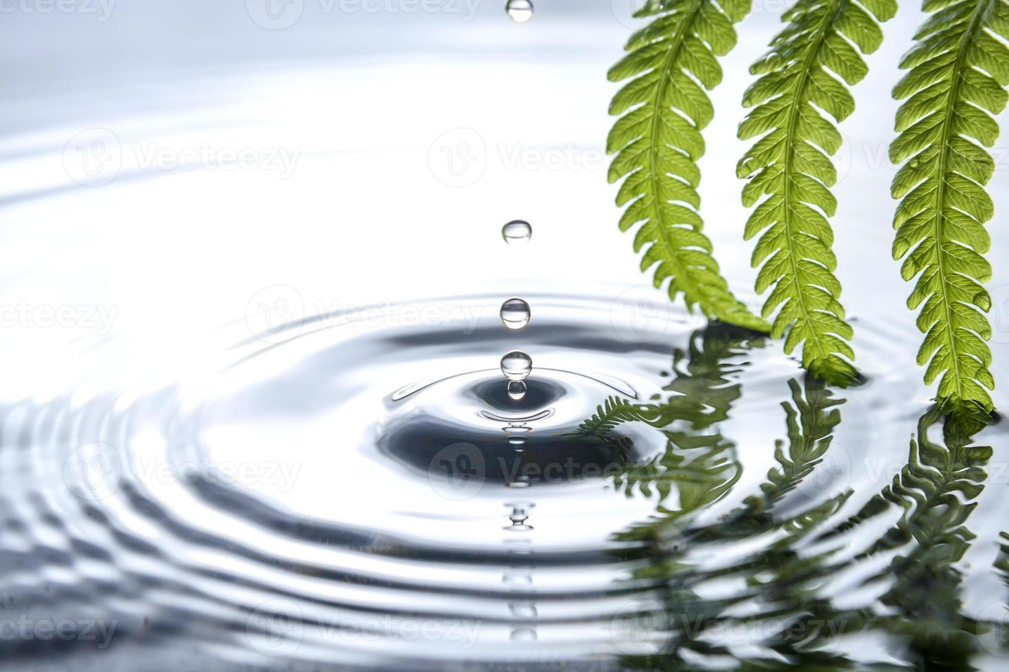 gota de água foto
